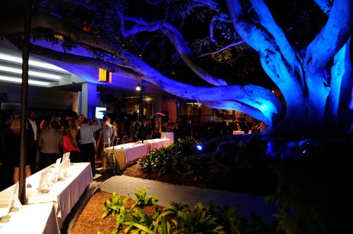 The blue-lit fig tree added great ambiance for the 300+ people celebrating LA Waterkeeper's Making Waves 20th Anniversary Event at the Fairmont Miramar Hotel and Bungalows in Santa Monica.